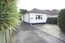 Semi-Detached Bungalow for sale in Heybridge Road...