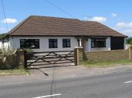 Detached Bungalow in Upminster