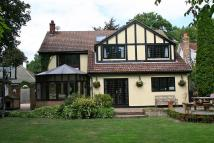 Hacton Lane Detached property for sale