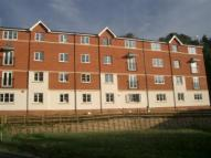 property to rent in Lavender Court, Arbourvale, St Leonards-on-Sea, East Sussex