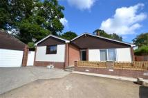 property to rent in Dunclutha Road, Hastings, East Sussex