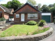 3 bed Bungalow to rent in The Orchard, Belper...