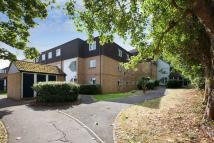 Flat to rent in Lower Holway Close...