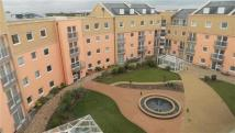 2 bed new Apartment for sale in Wooldridge Close...