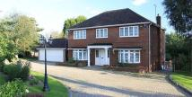4 bed Detached property for sale in Beaumont Road, EN10