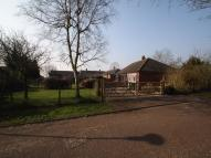 Semi-Detached Bungalow to rent in Reddings Close...