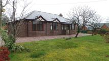 4 bed Bungalow for sale in Allaston Road, Lydney