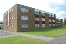 Flat in Selwyn Court...