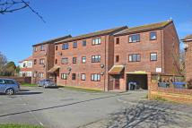 Brougham Walk Apartment to rent