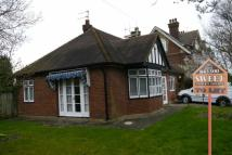 Maidstone Road Detached Bungalow to rent