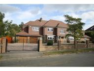 7 bedroom Detached home in SOUTH CHEAM