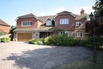 5 bedroom Detached home in SOUTH CHEAM
