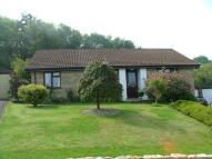 2 bedroom Detached Bungalow for sale in Shaftesbury, SP7