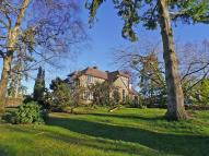 Detached property to rent in West Chiltington...