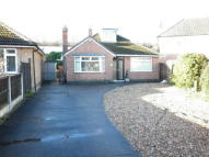 Bungalow to rent in Bradbourne Avenue...