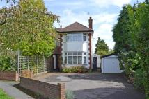 3 bed semi detached home in Horsell