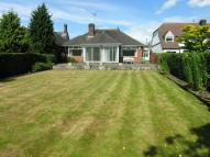 2 bed Detached Bungalow in Eccleshall Road, Stafford