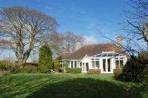 3 bedroom Detached Bungalow in Little Shawms...