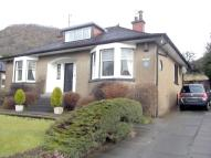 Detached Bungalow to rent in Stirling Road, Milton...