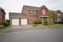 Detached property to rent in Victory Boulevard...
