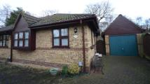 2 bedroom Bungalow in Newton Road, Farnborough...