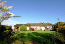 Detached Bungalow in Huxley Lane, Tiverton