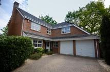 4 bed Detached house in Scantleberry Close...