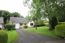 3 bedroom Detached Bungalow in The Pastures, Cottesmore...
