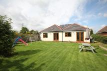 4 bed Detached Bungalow in Braunston Road, Oakham