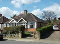 Semi-Detached Bungalow in Kingsthorpe Village...