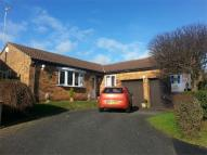 Detached Bungalow in Berrydale, Northampton
