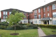 1 bedroom Apartment to rent in Morton Gardens...