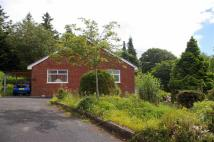 3 bedroom Detached Bungalow in Glan Y Mor, Glan Conwy...