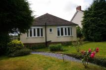 2 bed Detached Bungalow in Holyrood Avenue...