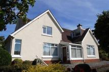 Detached Bungalow for sale in Gannock Park, Deganwy...