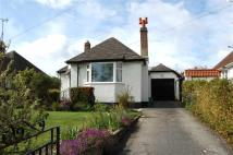 Detached Bungalow for sale in Deganwy Road, Llandudno...