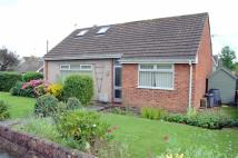 Detached Bungalow in Bryn Marl...
