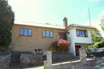 3 bed Detached Bungalow for sale in Vicarage Avenue...