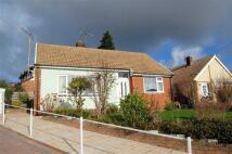 2 bedroom Detached Bungalow in Bryn Marl...