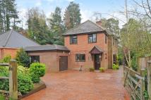4 bedroom Detached house in Pinehill Road...