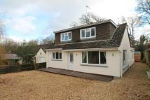 Detached house for sale in Wilton