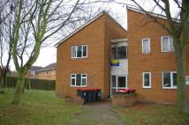 1 bedroom Flat in Mercia Drive, Leegomery...