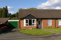 2 bed Semi-Detached Bungalow for sale in Carvers Close...