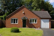 Detached Bungalow in New Church Close...
