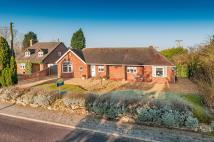Detached Bungalow to rent in Wellington Road, Muxton...