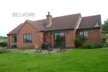 3 bed Detached Bungalow to rent in Melton Road...