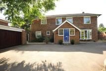 Detached property for sale in Billericay, Essex, CM12