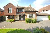 Detached house for sale in Ingatestone, Essex, CM4