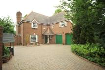 5 bedroom Detached home in Chelmsford, Essex, CM1
