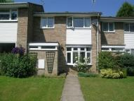 3 bedroom Terraced house to rent in Campbells Ride Holmer...